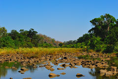 Riverbed (South Africa). Beautiful riverbed in the African bush (South Africa stock photography
