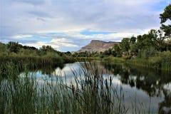 Riverbend parkerar II, palissaden Colorado royaltyfria bilder