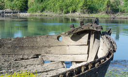 riverboat στοκ εικόνα
