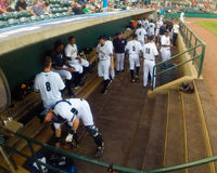 RiverDogs Get Ready to Play Ball! Stock Photography