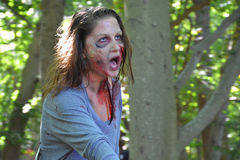 Riverhead NY, США, сентябрь 2014 - гонка зомби Стоковое Изображение