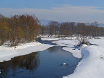 Riverheads of Ussuri in the winter. Winter landscape with the river and snow-covered coast Royalty Free Stock Photo