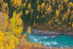 riverine Стоковое Изображение RF