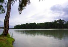 riverland paringa Стоковые Изображения