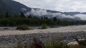 Riverlet da montanha do urro que flui entre árvores e rochas frondosas em Geórgia no slo-mo video estoque