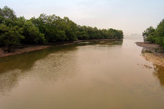 Rivermouth of Sungei Buloh Royalty Free Stock Photography