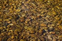 Riverocks de oro Foto de archivo