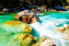 Rivers with beautiful turquoise water. Soca River in Slovenia. Stock Photos