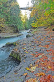 Rivers Edge in Autumn Royalty Free Stock Photography