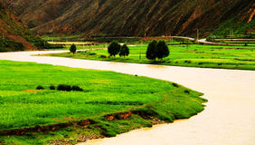 Rivers flow in the green fields, China`s Tibet royalty free stock photos