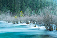 Rivers jiuzhaigou Stock Photography