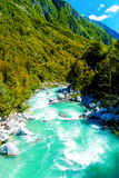 Rivers in the mountains with beautiful turquoise water. Soca River in Slovenia. Royalty Free Stock Image