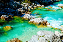 Rivers in the mountains with beautiful turquoise water. Soca River in Slovenia. Stock Photography