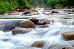 Rivers in streams that flow through the rocks that are in the forest Royalty Free Stock Image