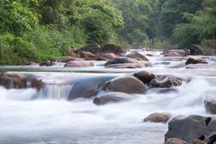 Rivers in streams that flow through the rocks that are in the forest Royalty Free Stock Photo