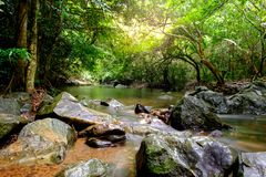 Rivers in streams that flow through the rocks Royalty Free Stock Images