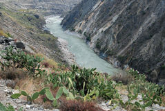 Rivers in  Tibet. Nujiang River in east  Tibet。The valley  is dry here,cactus are  growing densely Stock Photos