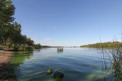 Riverscape, la belle eau bleue de la rivière, image panoramique, rivière, verdure, mousse, l'eau, belle photo de rivière image libre de droits