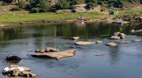 Riverscape przy Hampi, Tungabhatra słonia skąpaniem - obrazy stock