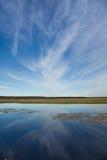 Riverscape z powodzią Zdjęcie Stock