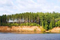 Riverside. On the riverside grow pines stock photos