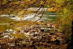 riverside Стоковые Фотографии RF
