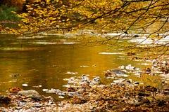 riverside Стоковые Изображения