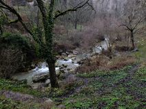 Riverside at autumn. Autumn, fall, river riverside cold rainy day, nature windy rainy day, muddy area, forest, in the forest. safranbolu turkey royalty free stock images