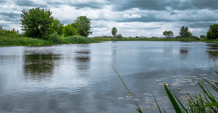 Riverside. Beautiful landscape of the river and cloudy sky, and lilies Stock Photography