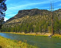 Riverside Bluffs. View in the Crooked River Canyon south of Prineville, OR royalty free stock image