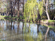 Riverside of the canal de Castilla Royalty Free Stock Photos