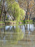 Riverside of the canal de Castilla Stock Photography