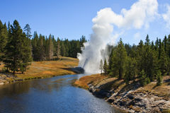 Riverside Geyser Royalty Free Stock Photography