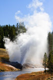 Riverside Geyser Royalty Free Stock Photo