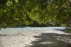 Riverside With Green Trees Stock Photography