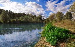 Riverside landscape. White clouds over the riverside royalty free stock photography