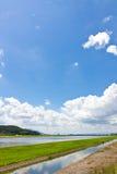 Riverside landscape of summer Stock Photos