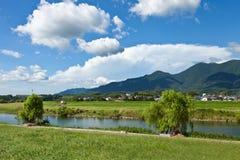 Riverside landscape of summer Royalty Free Stock Images