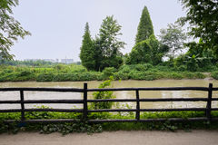Riverside log-fence in sunny summer Stock Images