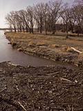 Riverside Log Jam. This image was taken of the Platte River near Gretna, NE and Schramm Park Stock Photography