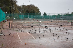 Riverside Park after Hurricane Sandy. Tennis courts in Riverside Park, Manhattan, the day after Hurricane Sandy Royalty Free Stock Image