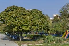 Riverside park iChildren's nook of riverside park in Ruse townn Ruse town along river Danube Royalty Free Stock Photos
