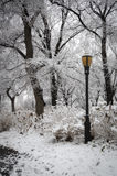 Riverside Park, NYC. Riverside Park, Manhattan in winter with snow, trees and light post Royalty Free Stock Photo