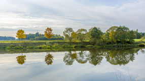 Riverside scene with trees that are reflected in the river Tauber Stock Photos