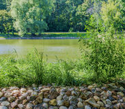 Riverside. Stone river is overgrown with grass stock images
