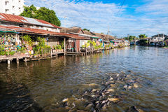 Riverside thai village. The riverfront village, old homeThailand Stock Images