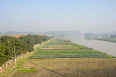 Riverside tillage in sunny foggy winter morning. Chengdu,China Royalty Free Stock Photography