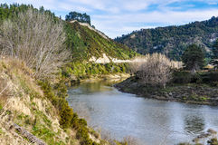 Riverside view in Whanganui National Park, New Zealand Stock Photos