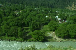Riverside village near Srinagar in Kashmir. A beautiful scene in the season of a monsoon showing lush green trees and river water flowing with force Stock Image