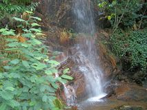 Riverside/waterfall detail - summer time (Orvalho - Portugal) Royalty Free Stock Images
